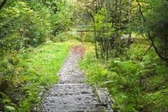 Cesta ke Chřibskému vodopádu