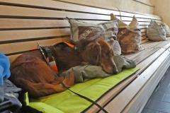 Odpočinek v Kavárně u Tadeáše